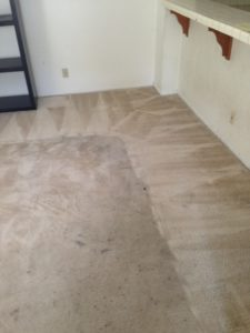 carpet cleaning service in Trabuco Canyon